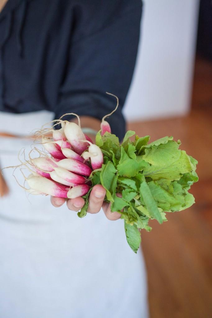 radish, radishes, sopas