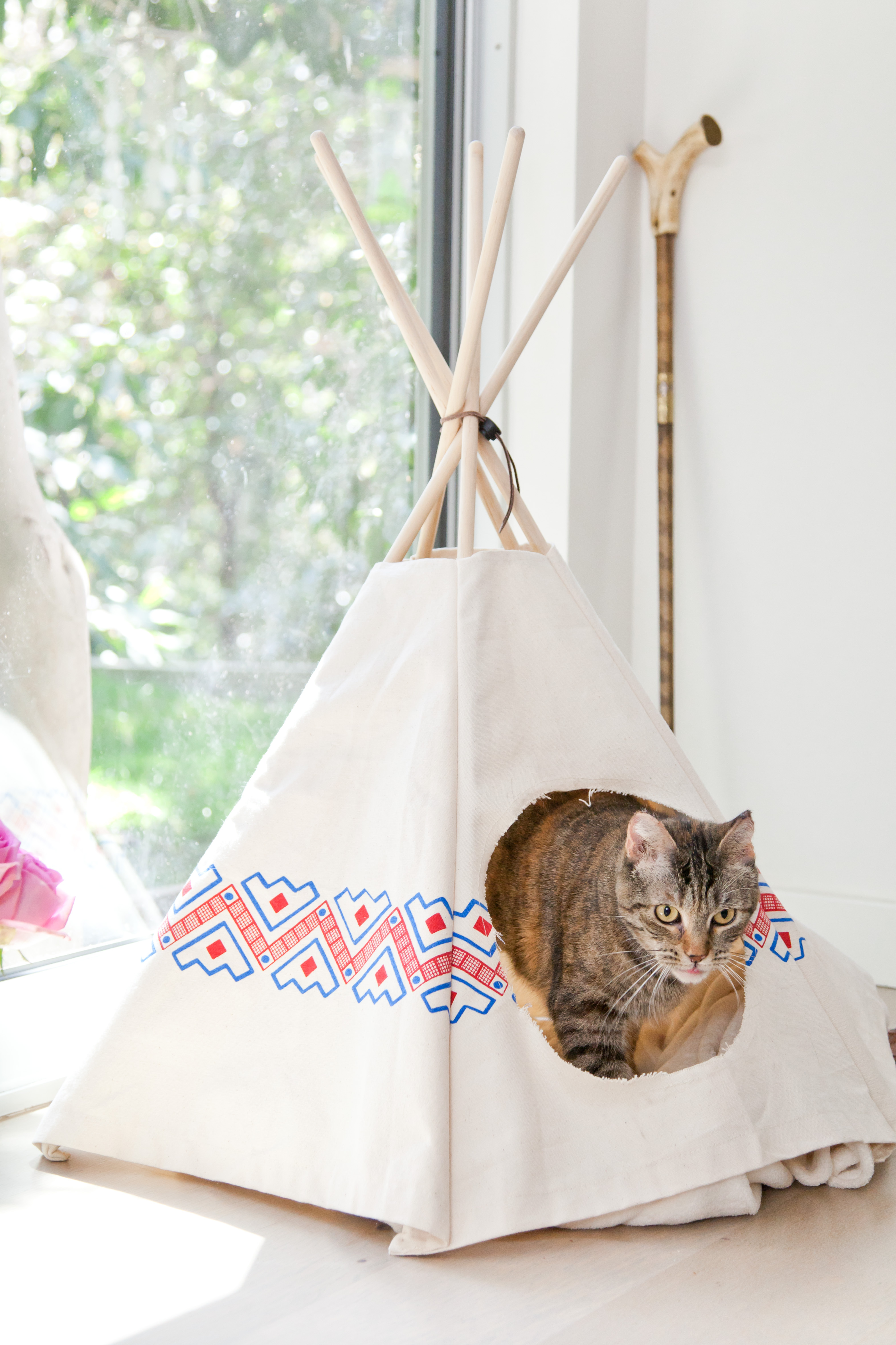 Cat tipi and the tale of fig the local rose for Diy cat teepee