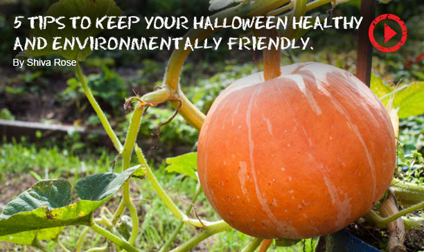 Tips For A Green Halloween