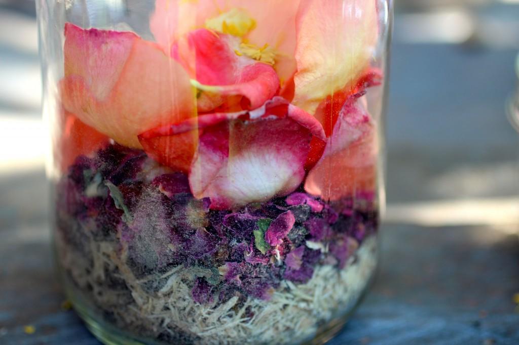 rose elixir, priestess