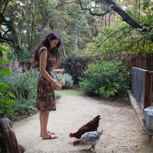 raising chickens, home coops for chickens, Sous Style, Shiva Rose, Chickens, The Local Rose, Rose Land