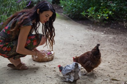 home coops for chickens, shiva rose