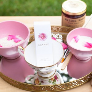 Queen Bee Spa, Jodi Shays, The Local Rose, Shiva Rose, natural facials, non-toxic products, honey, bees