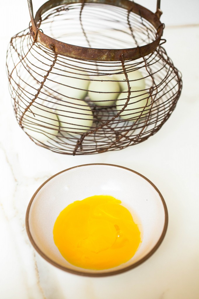 egg yolks for hair conditioner