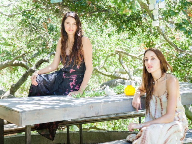 The Local Rose interviews Shannon Vaughn, founder of Pursoma, a wellness brand aiming to reclaim healthier lives through detoxifying the mind and body.