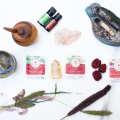 Shiva_Traditional_Medicinals-23