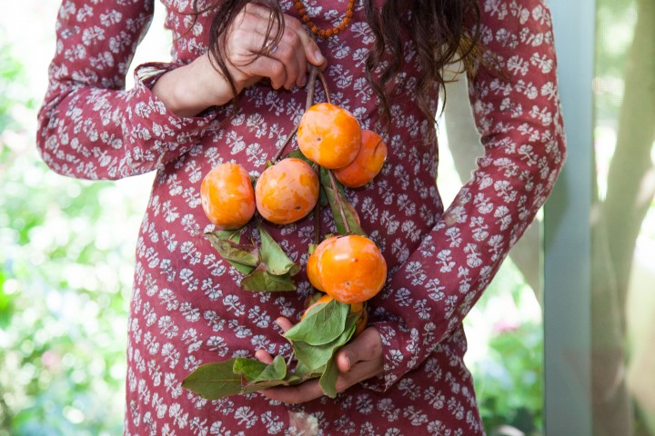 shiva_persimmon_seeds_oil-14-of-28